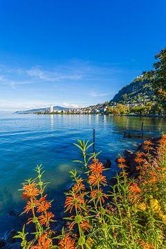 Montreux am Genfersee von Werner Dieterich