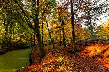 Herfst weg 3 van Ferdinand Mul