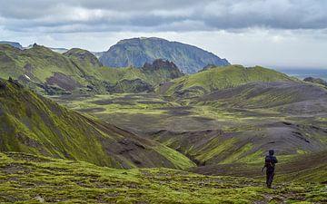 Wandelaar in groen berglandschap IJsland van