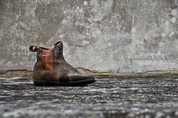 Stilleven met schoen van Marieke van der Hoek-Vijfvinkel