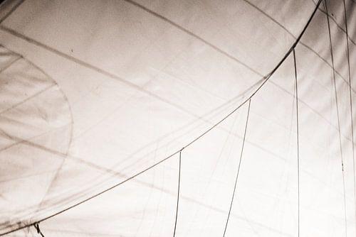 sailing details van