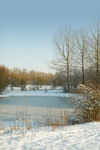 winter@zwevegem van