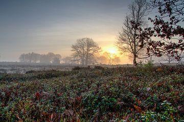 Misty Aufstieg von Patrick Ruitenbeek