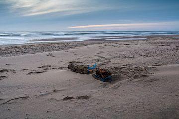 Holz am strand von Patrick Herzberg