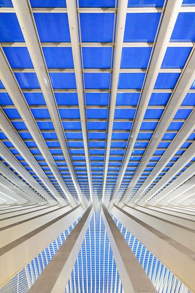 Verticale blauwe lijn Liege-Guillemins van Dennis van de Water