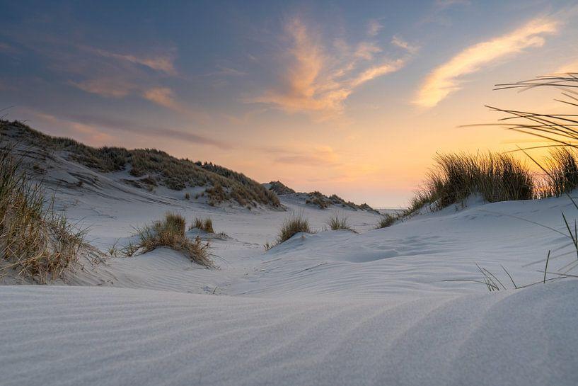 Witte duinen van Marjolein van Roosmalen
