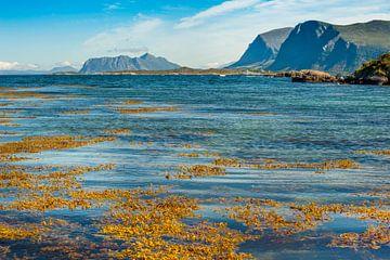 Noorse Zee vanuit Bølandet, Noorwegen van Margreet Frowijn