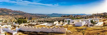 Panorama vanaf de heuvel in Fez, Marokko van Rietje Bulthuis
