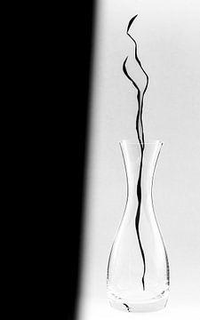 Schwarz und Weiß von Jean Arntz