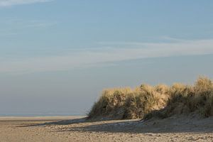 De duinen van Goedereede