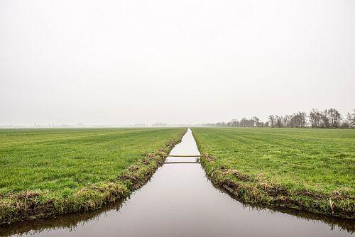 Hollands weiland met slootje in de mist, fotoprint