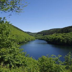 De Riveri-dam bij Trier van Berthold Werner
