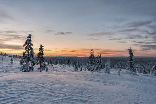 zonsopkomst in lapland Finland