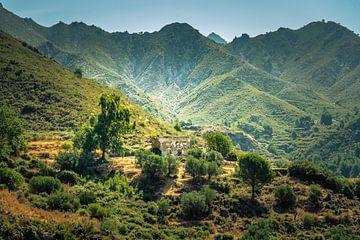 Wonen in de bergen von Bernardine de Laat