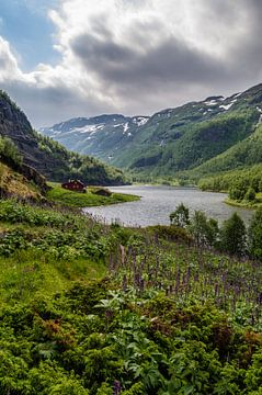 Rode Noorse huis langs de Aurlandselvi in Noorwegen van