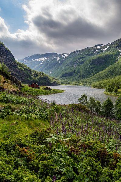 Rode Noorse huis langs de Aurlandselvi in Noorwegen van Ricardo Bouman   Fotografie