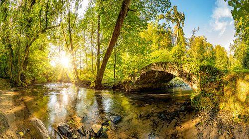 Old bridge over a creek van Günter Albers