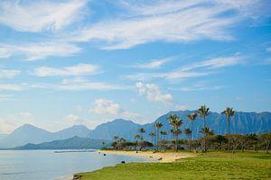 Hawaii van