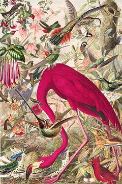 You can never have enough birds van Jadzia Klimkiewicz