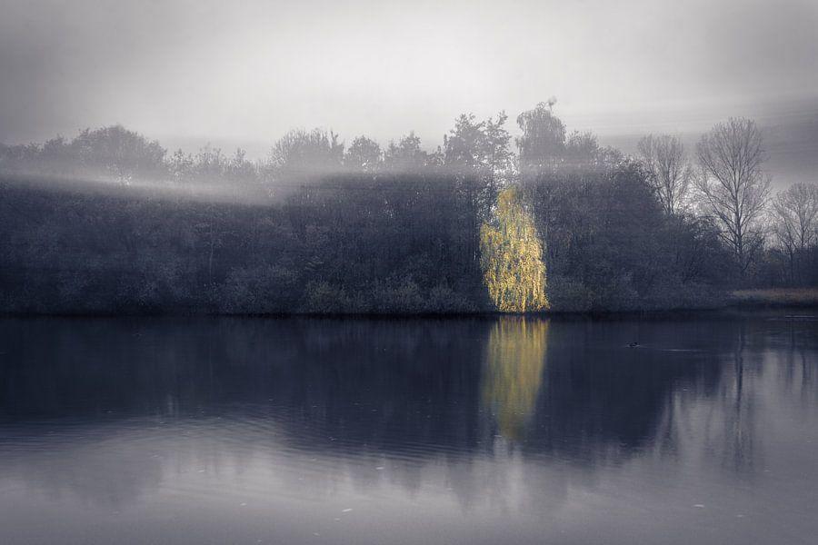 Ethereal reflections (Bleiswijk) van Alessia Peviani