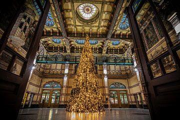 Oh Christmas tree van Johan Mooibroek