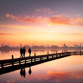 Sonnenuntergang der Skyline von Rotterdam (Hochformat) von Claire Droppert