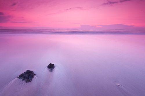 Purple evening at the beach - 3 van