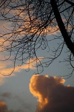In the sky van Femke Krone