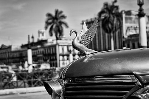 Havanna -  motorkap-ornament van klassieker