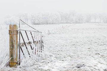 Hekje in de sneeuw van Truus Nijland