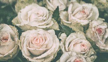 Rosenliebe von Kirsten Warner