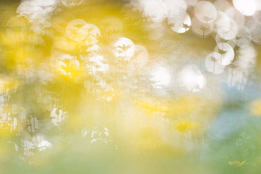 Knallend geel