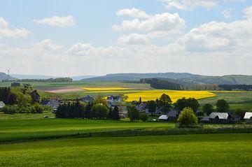Eifel landscape mit Rapsfeldern von Susanne Seidel