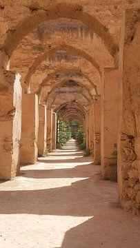 Meknes, Marokko van Nina van Bodegom