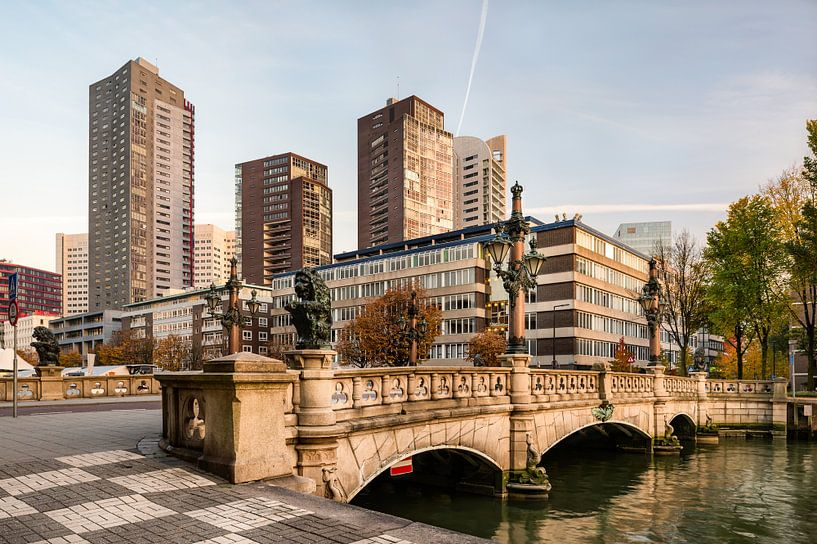 Bridge in Rotterdam, Netherlands van Lorena Cirstea