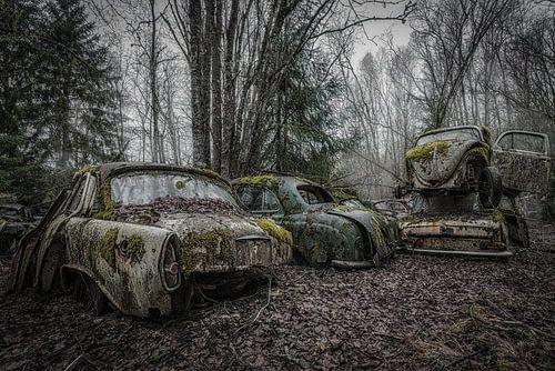 Autowrakken Bos van