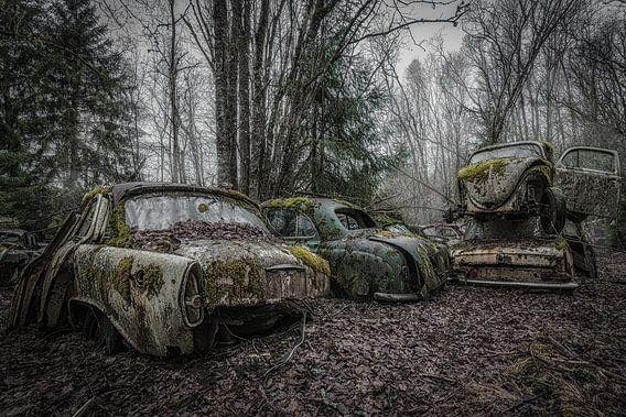 Autowrakken Bos van Maikel Brands