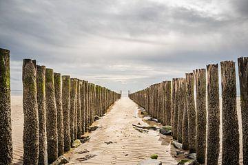 Strandpalen Zoutelande van Anita Kabbedijk