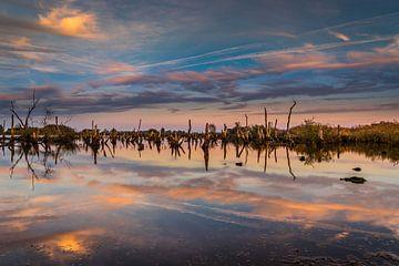 Nationaal Park De Alde Feanen bij Earnewald (Eernewoude) van Annie Jakobs