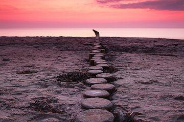 Kribben aan de Oostzee bij zonsondergang van Frank Herrmann