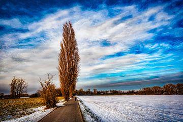 Winterlandschap met boom en sneeuw voor wolkenformatie van Dieter Walther