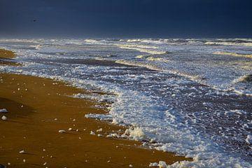 Schuim op strand von Georges Hoeberechts
