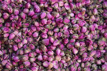 Getrocknete Rosen von jan katuin