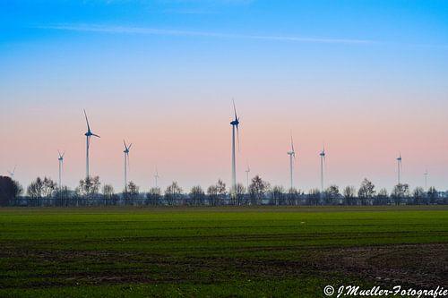 Windmühlen im Sonnenuntergang