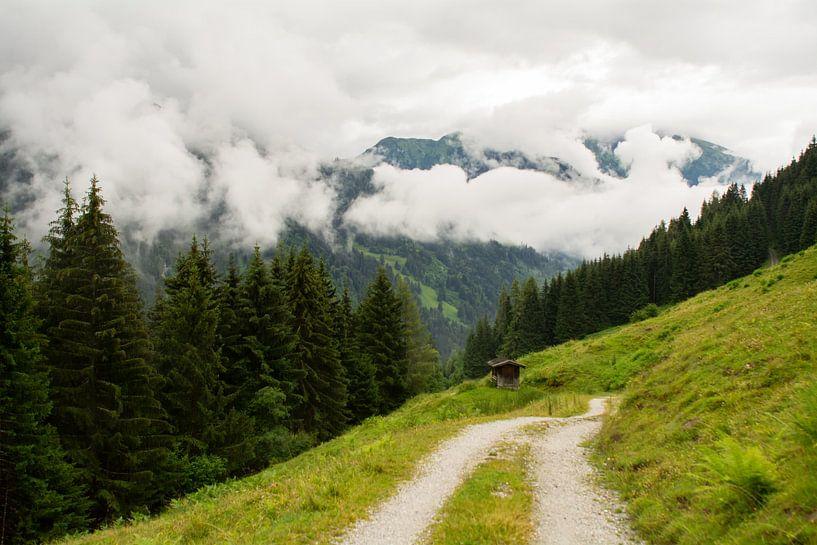 Wanderweg von Alena Holtz