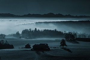 Der Nebel als Landschaftsmaler