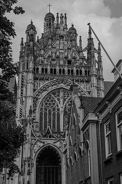 Saint John's Cathedral 's-Hertogenbosch van Freddie de Roeck