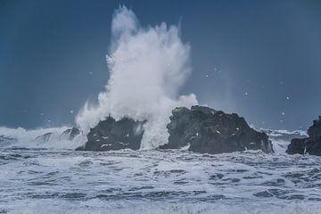 Ruig zeewater klapt op rots van Jo Pixel