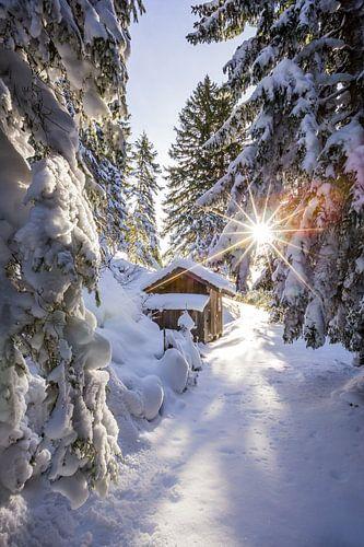 Een Wintersprookje van Coen Weesjes