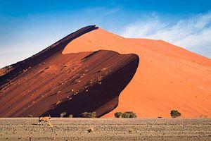 Dune X van